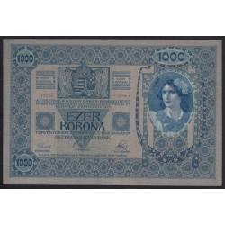 1000 kronen/korona 1919