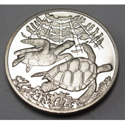 2 pounds 2017 PP - Green sea turtle